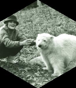 Jääkaru Franz